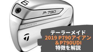 テーラーメイド 2019 P790アイアン &P790UDI の特徴を解説