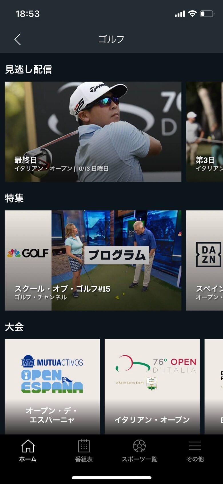 ダゾーンゴルフ観戦