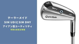 SIM UDIとSIM DHY発売 2