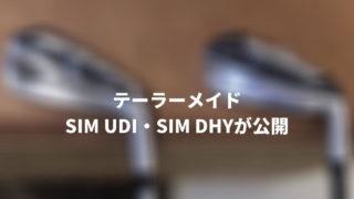 テーラーメイドSIM UDI DHY